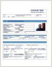 Hoja De Vida formato Minerva 1003 Descargar Gratis Hoja De Vida Mario Hernandez