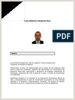 Hoja De Vida formato Unico Dane Proyecto De Acuerdo Plan De Desarrollo Medellin 2016