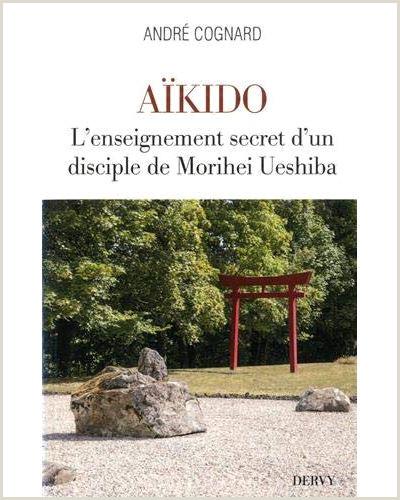 Hoja De Vida Minerva 1003 Editable Word Livre Achat Vente De Livre Pas Cher