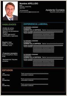 Hoja De Vida Minerva 1003 Imprimir Las 8 Mejores Imágenes De Plantillas Y Modelos De Curriculum