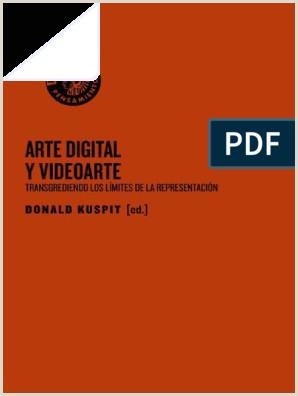 Arte Digital & Videoarte Donald Kuspit
