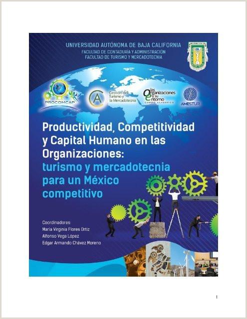 Hoja De Vida Minerva Azul Para Descargar Productividad Petitividad Y Capital Humano En Las