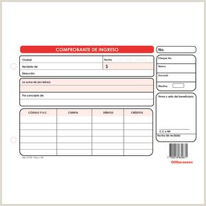 Formas administrativas y contables icina