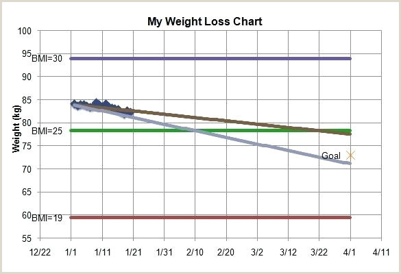 How to Calculate Percentage Of Weight Loss In Excel Blood Pressure Tracker Template – Bridgeoflochay