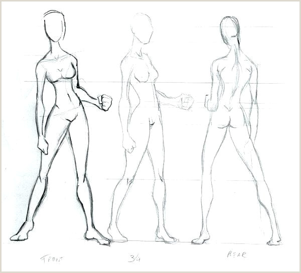 Medical Human Body Outline Drawing at PaintingValley