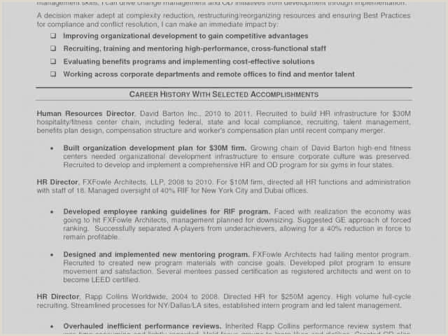 Human Resources Manager Resume 82 Managing Director Resume Sample