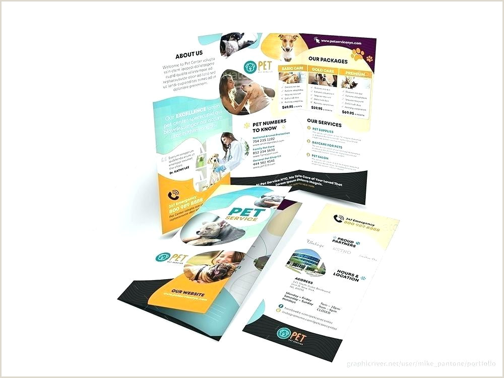 Indesign Product Catalog Template Best Professional Brochure Template Word Download
