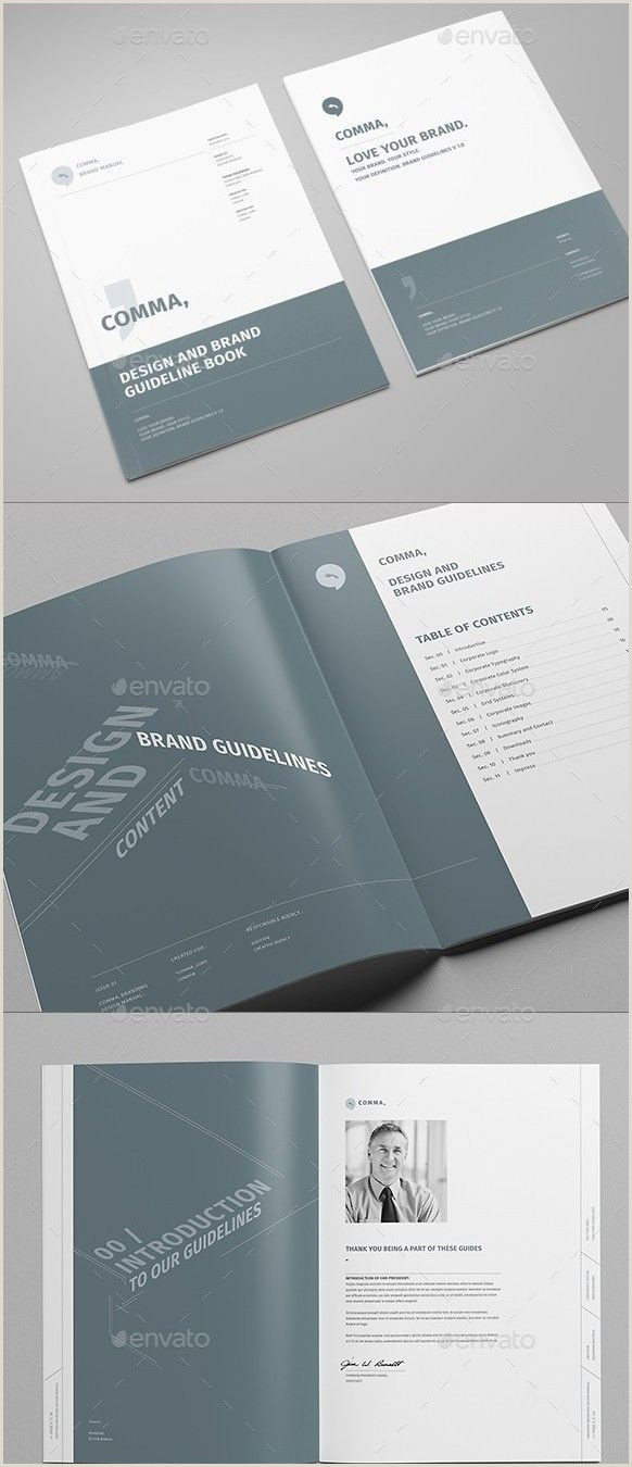 32 Best Brand Guidelines Templates PSD & InDesign Download