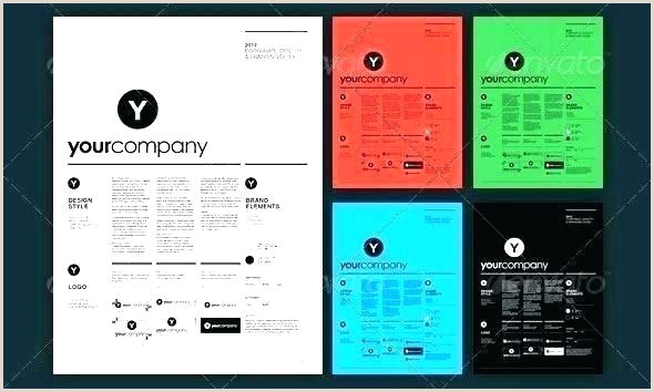 Page Logo Brand Identity Guidelines Template For Download