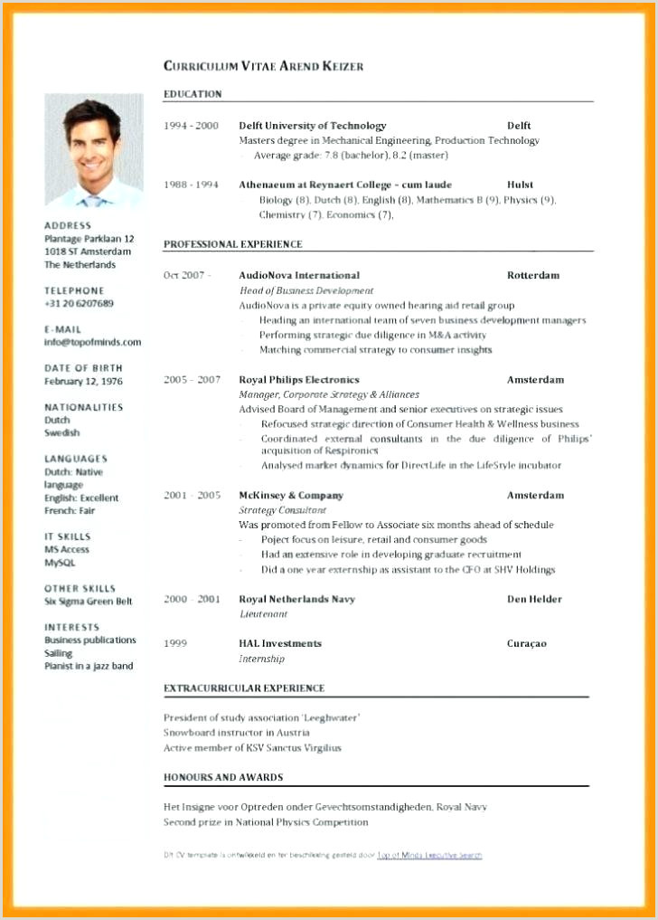 english cv template word