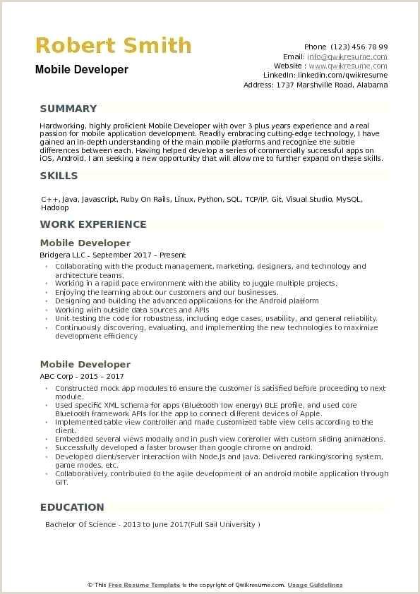Resume Template App Examples Latest Example Resume Elegant