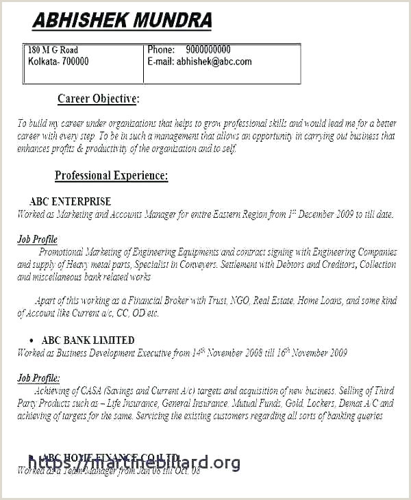job descriptions template – digitalhustle