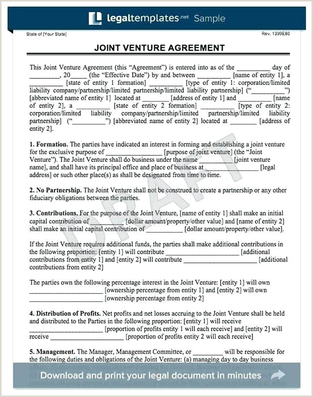 Joint Venture Agreement Form Business Management Contract