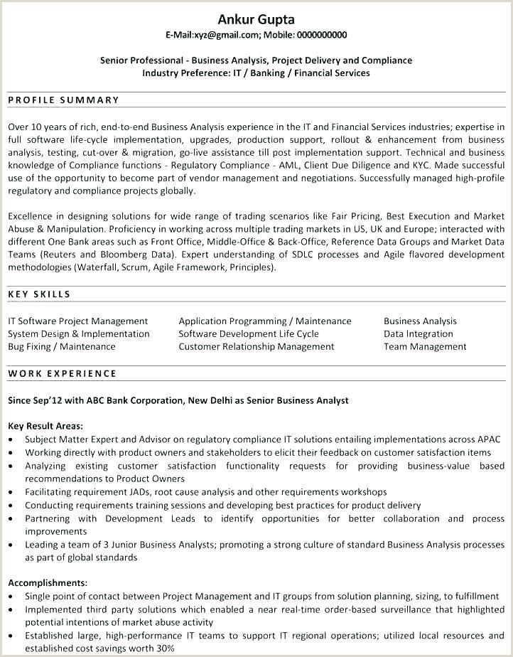 business analyst cv template