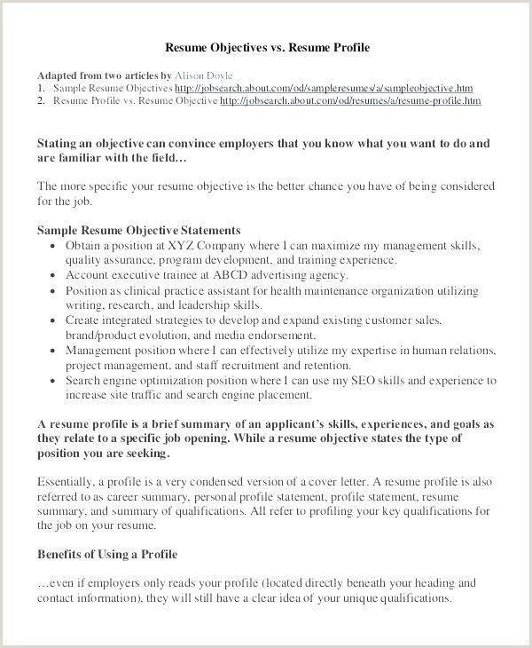 Kennel attendant Resume Vet assistant Resume Professional Tech Resume Template