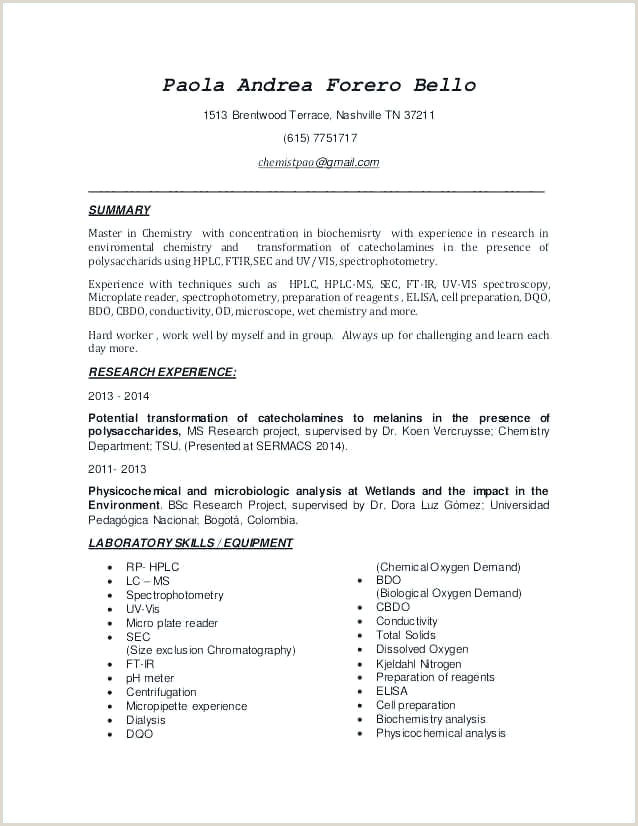Cv Pour Babysitting Exemples Childcare Resume Templates