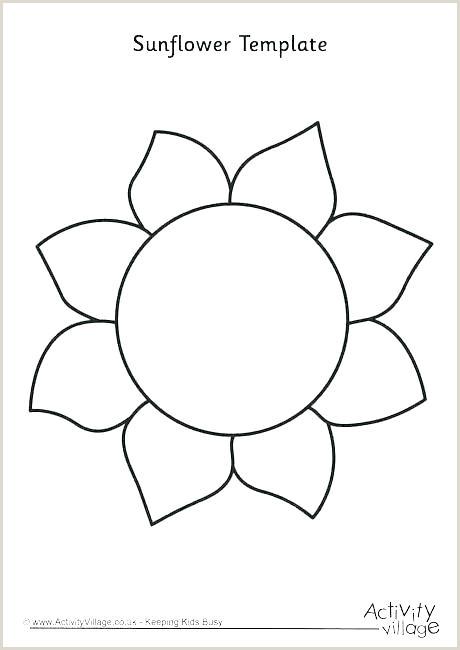 Large Flower Petal Template Big Flower Paper Template – Bashirsk