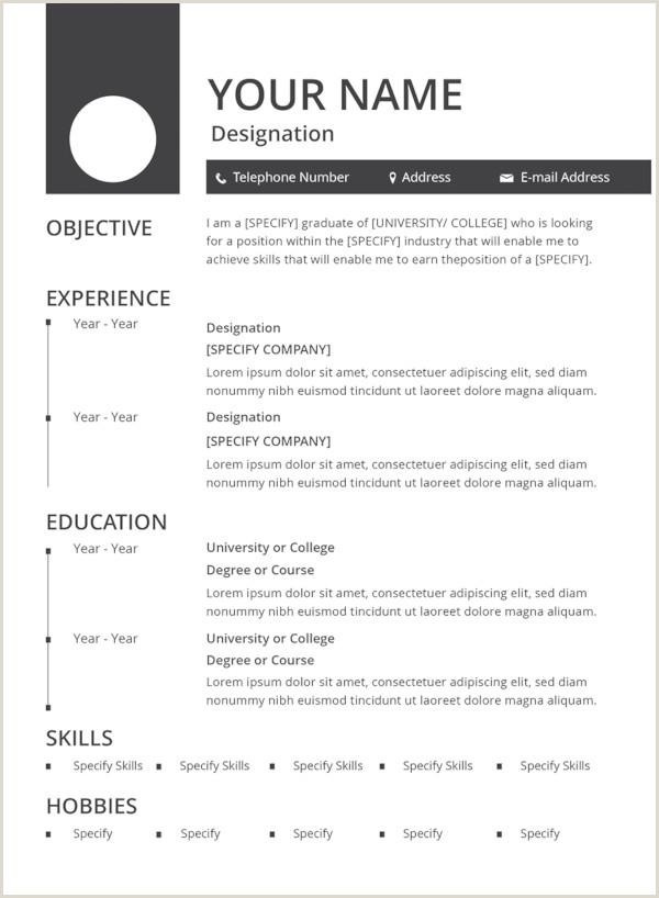 Latest Curriculum Vitae format Download Pdf 47 Best Resume formats Pdf Doc
