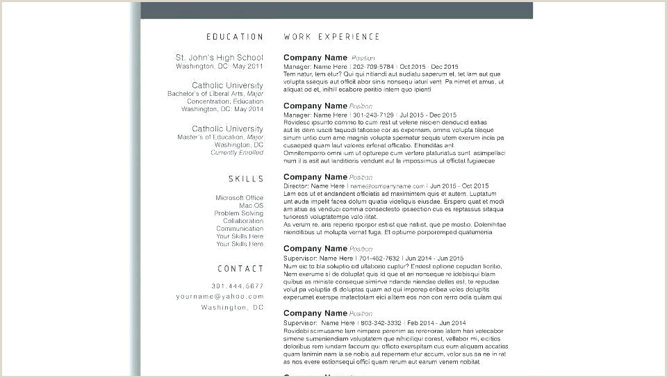 resume format in word – paknts