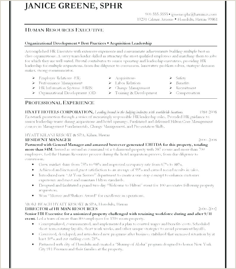 Senior Management Cv Template Sample Executive Resume