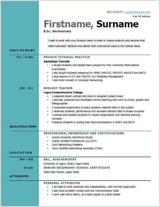 Latest Cv Format Accountant Best Way To Write A Curriculum Vitae Cv In Nigeria Samples