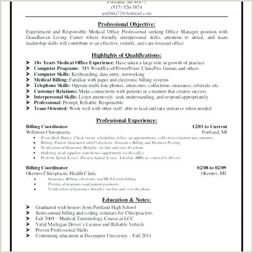 Resume Template Clear Create Professional Cv Template Pdf