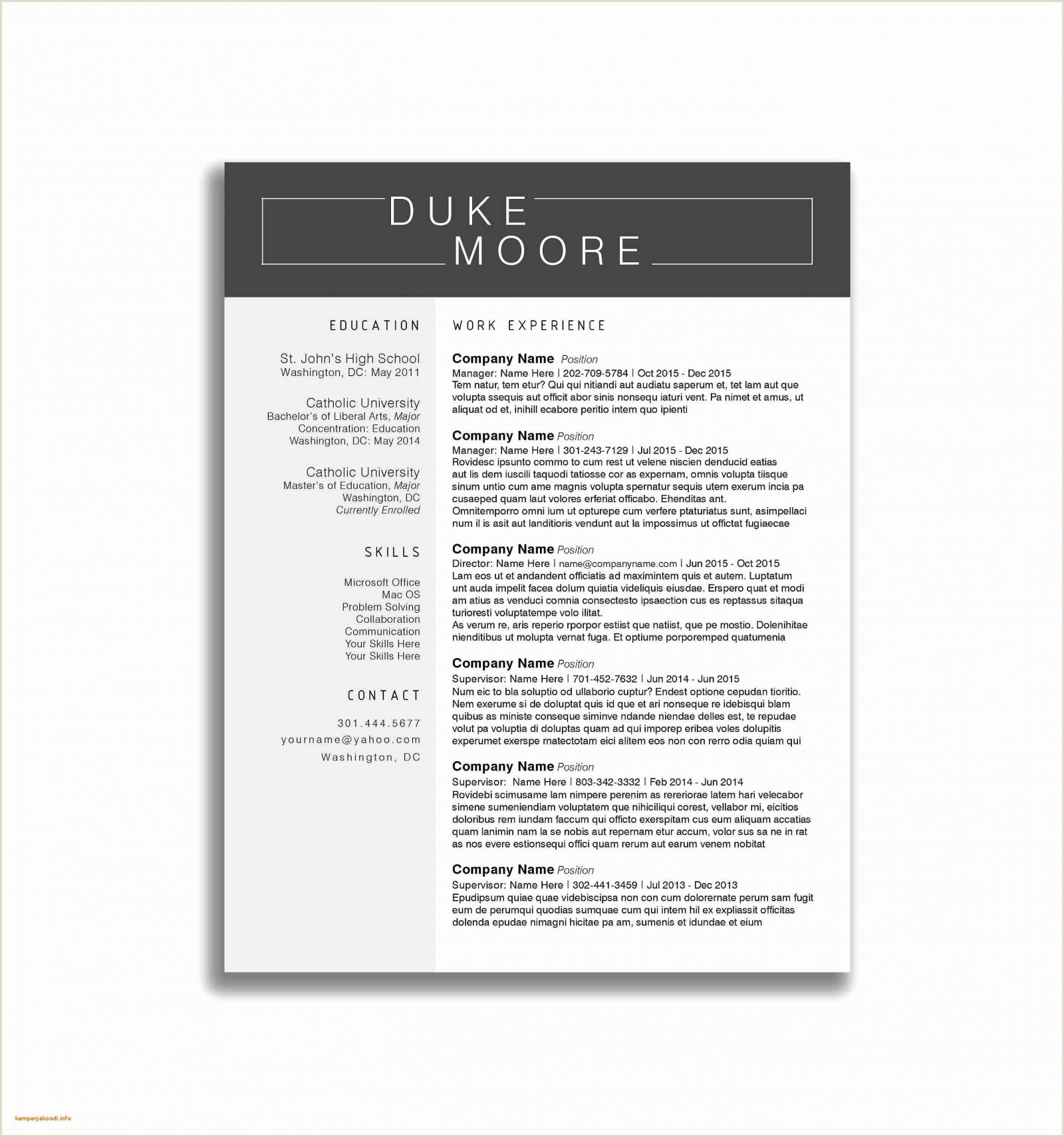 Standard Resume Template 4 Latest Cv Format Sample