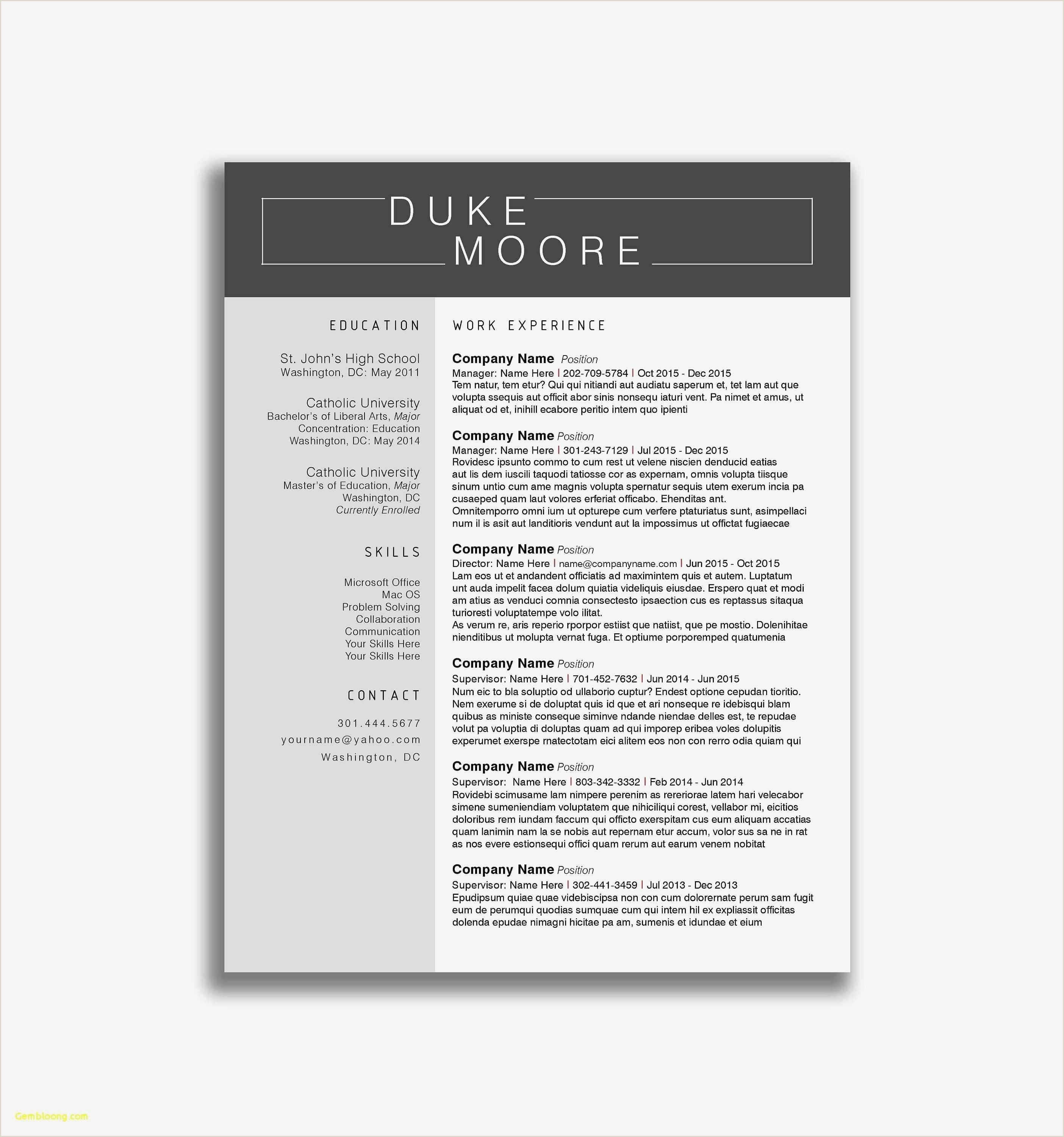 Example Latest Cv format Best 44 Luxury Resume