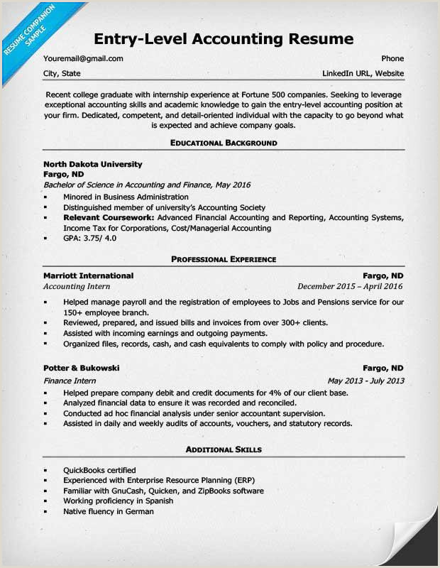 Fresh Accounting Resume Template