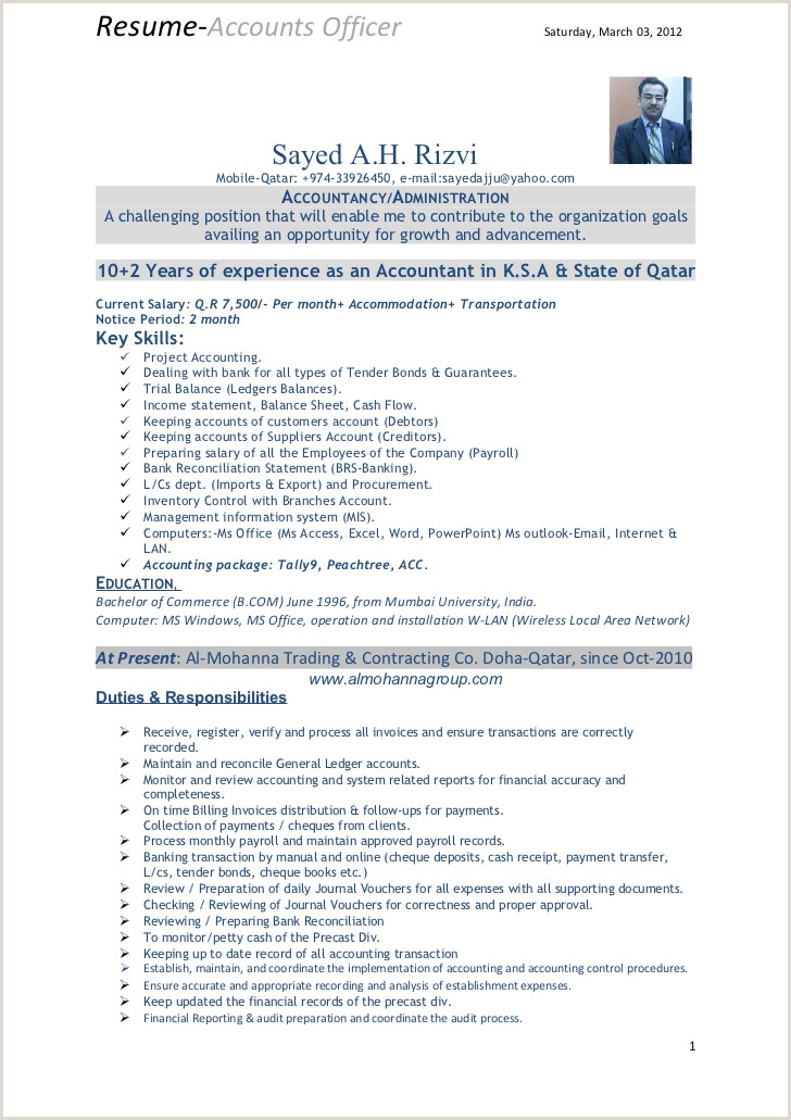 12 13 accounts executive resume samples