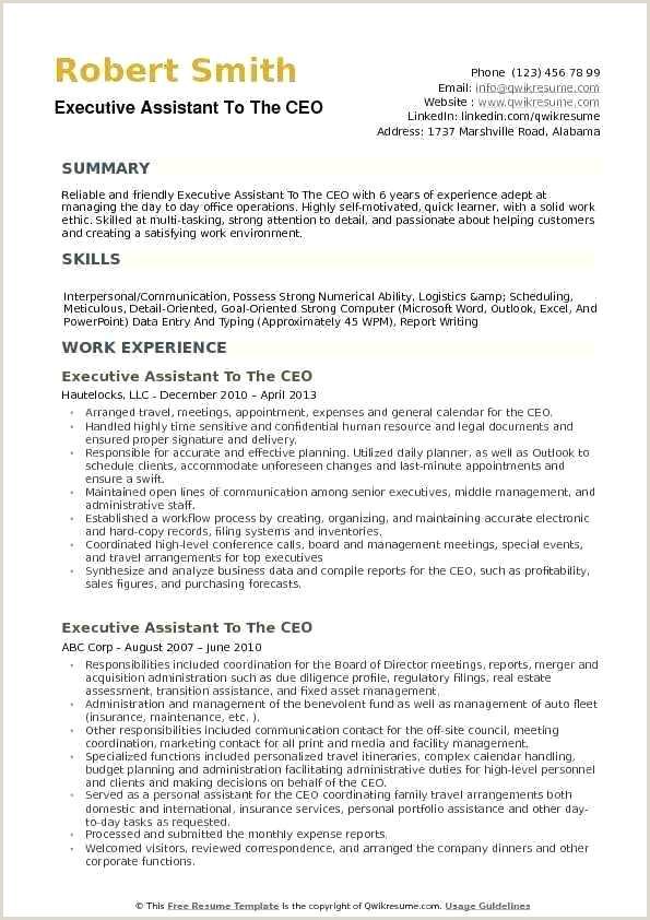 Resume Sample Ceo Cv Template Doc