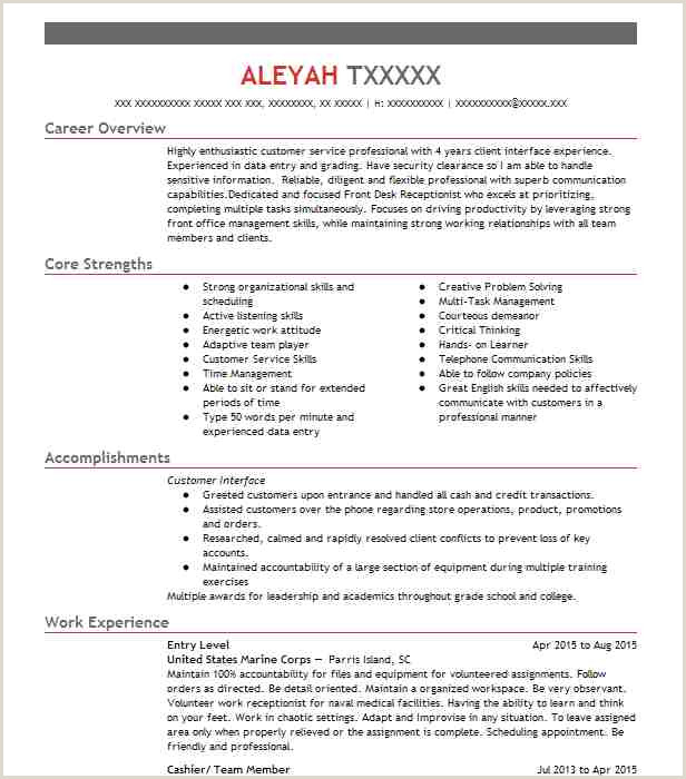 Latest Cv format for Bank Job Eye Grabbing Entry Level Resumes Samples
