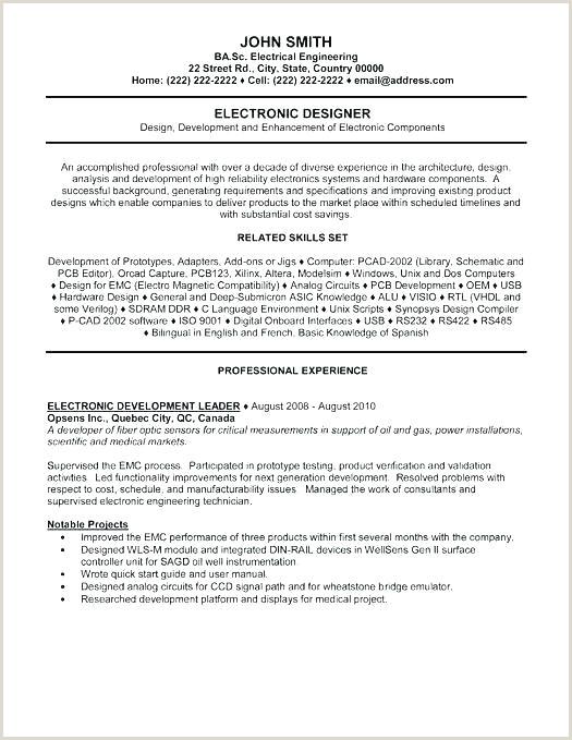 professional engineer resume template