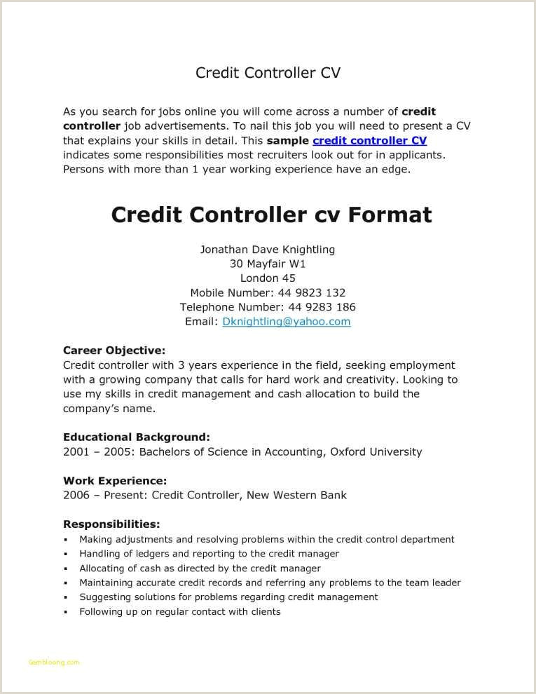 Latest Cv format for Experienced Bankers How to Write A Banking Cover Letter Fresh Letter Writing