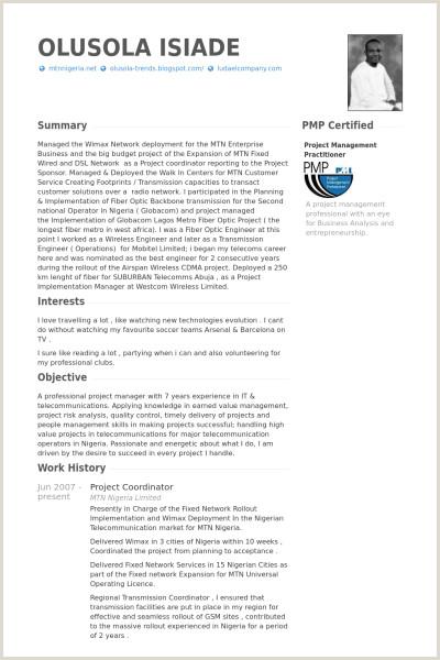 project coordinator Resume Example cv