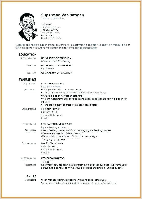 Graduate Cv Template Word Best Rn Resume Template Gratuitement