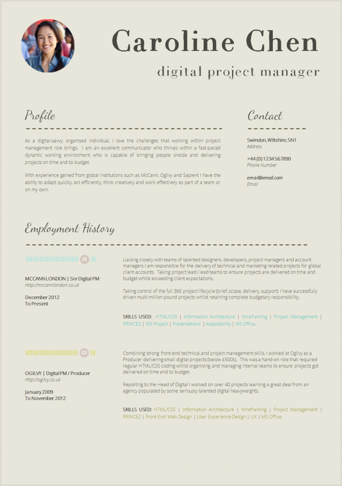 13 Slick And Highly Professional Cv Templates Guru Latest