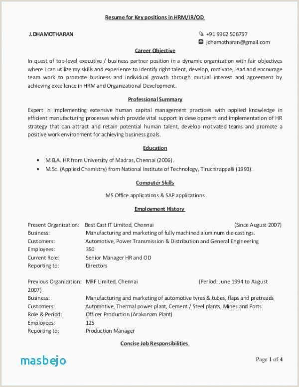 Latest Cv format for Hr Executive 41 It Director Resume Sample