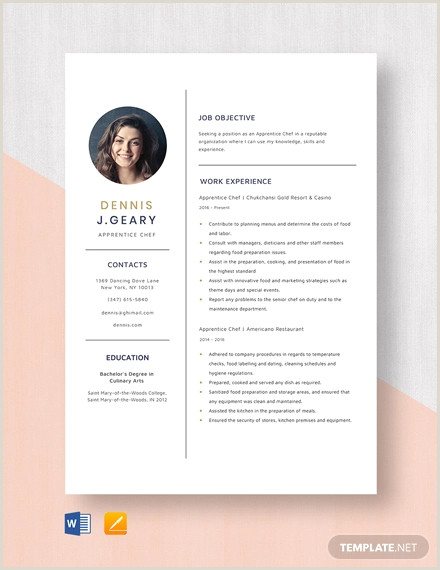 Latest Cv format for Job Application In Bangladesh 14 Chef Resume Templates Word Pdf Google Docs