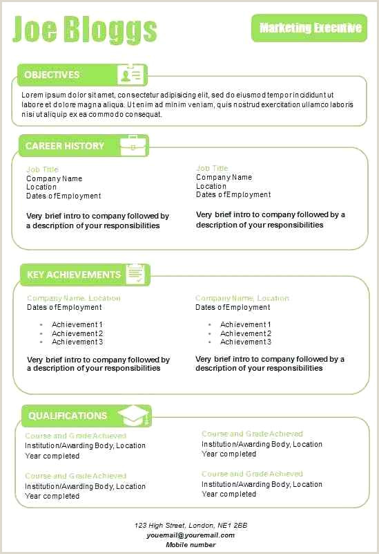 Info Standard Cv Template Word Graphical In Apple Green