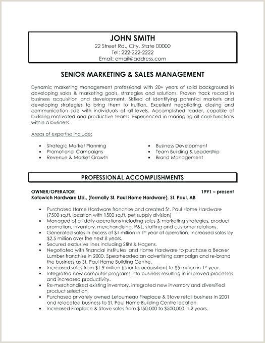 Digital Marketing Manager Marketing Cv Template Marketing Cv