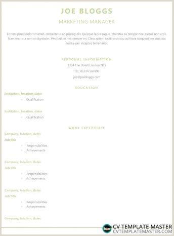 More CV templates CVTemplateMaster