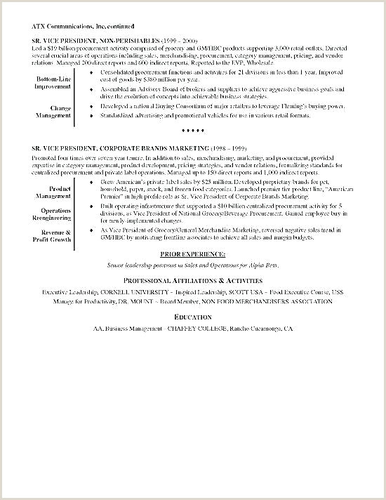 resume template 2017