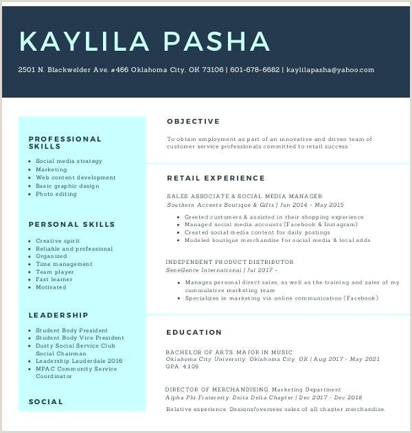 Social Media Associate Resume Social Media Executive Cv