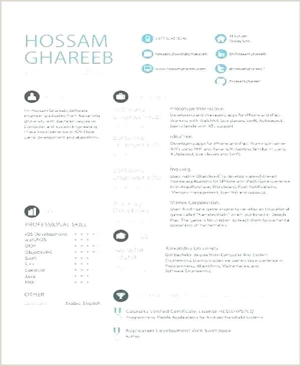 cv template for developer – naomijorge