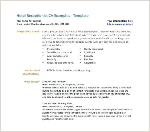 job cv template