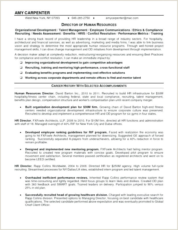Latest Cv format In Dubai Best Resume Template 2016