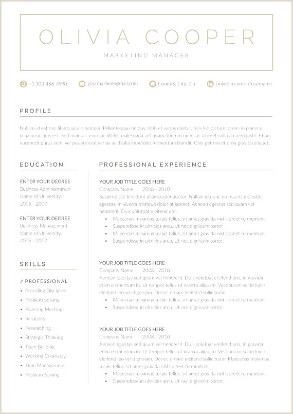 Lovely Resume Templates Free Download for Microsoft Word