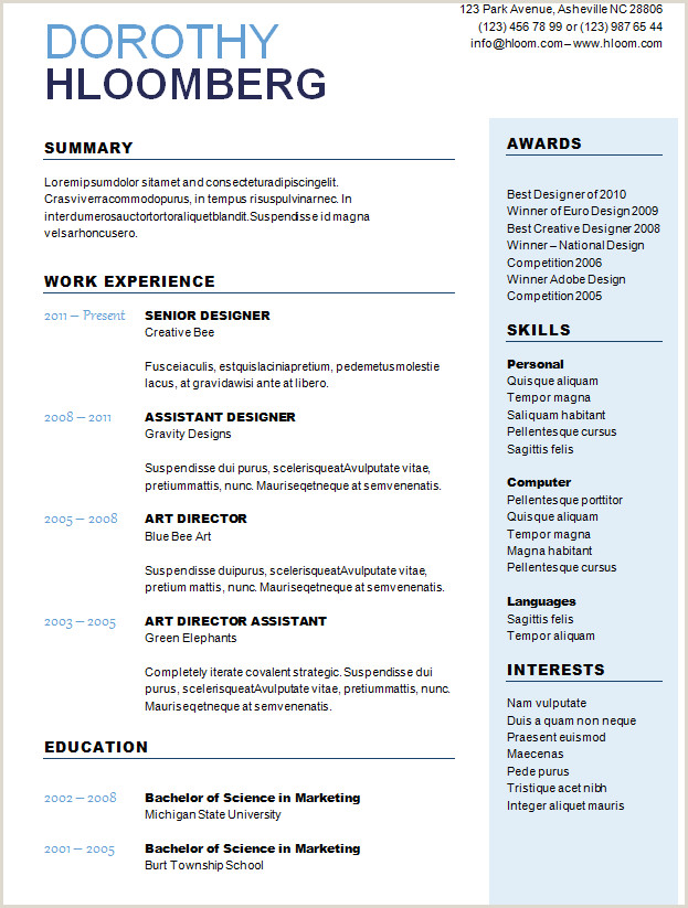 10 Best CV Formats Templates and Tips