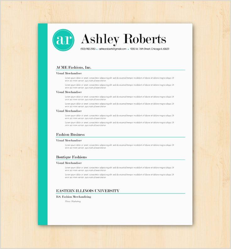 Current Resume formats 2016 Examples Super Current Resume